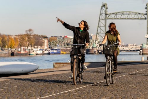 Cycle like a real local through Rotterdam